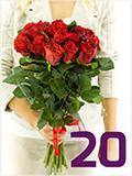 Prodej růží - 20 růží