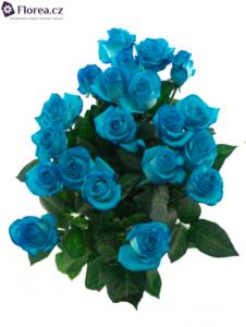 Světle modré růže