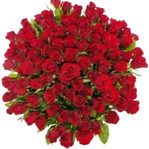 Kytice - Kytice 100 červených růží RED CALYPSO 50cm