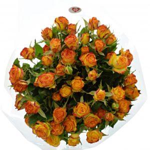 Kytice - Kytice 10 trsových růží EYELINER 50cm