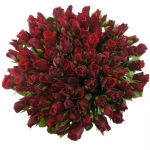 Kytice - Kytice 100 červených růží RED PARIS 50cm