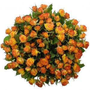 Kytice - Kytice 100+ květů růží EYELINER 50cm