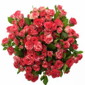Kytice - Kytice 100+ květů růží FIREWORKS 50cm