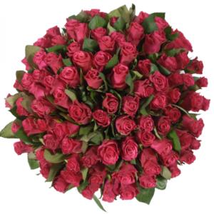 Kytice - Kytice 100 malinových růží GRAND EUROPE 60cm