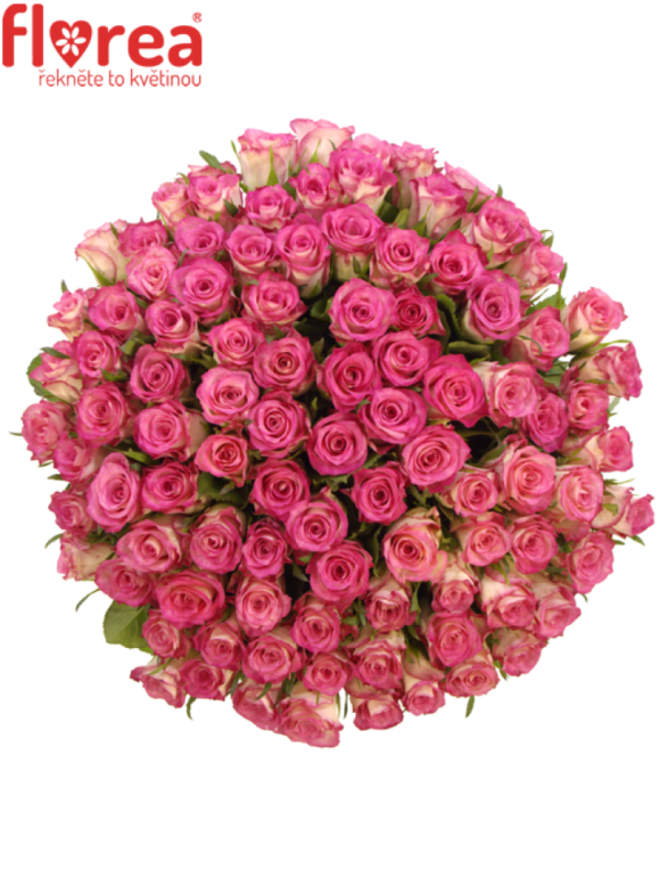 Kytice - Kytice 100 růží ENSEMBLE 60cm