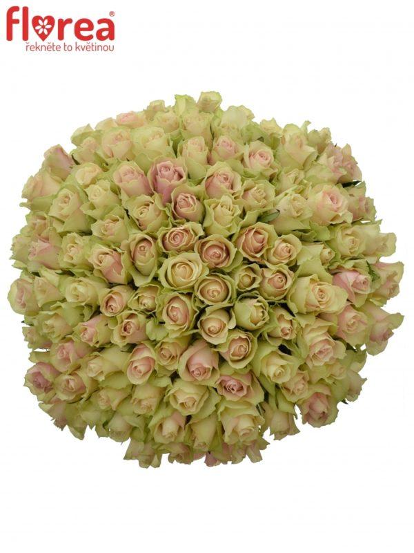 Kytice - Kytice 100 růží LA BELLE 50cm