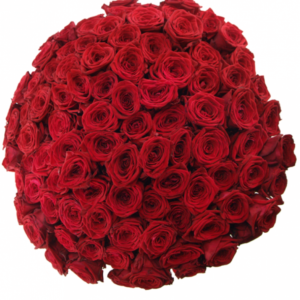 Kytice - Kytice 100 rudých růží RED NAOMI! 50cm