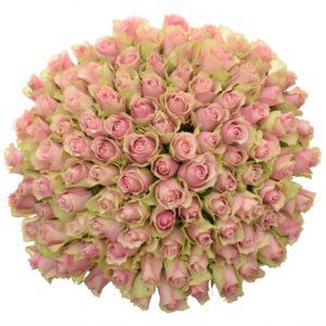 Kytice - Kytice 100 růžových růží BELLE ROSE 50cm