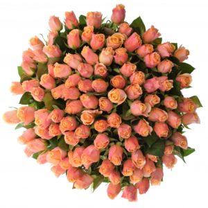Kytice - Kytice 100 růžových růží LOWLANDS 50cm
