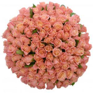 Kytice - Kytice 100 růžových růží MISS PIGGY 50cm