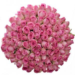 Kytice - Kytice 100 růžových růží REVIVAL 50cm