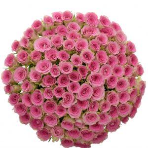 Kytice - Kytice 100 růžových růží TIMES SQUARE 50cm