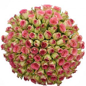 Kytice - Kytice 100 žíhaných růží GLOW 50cm