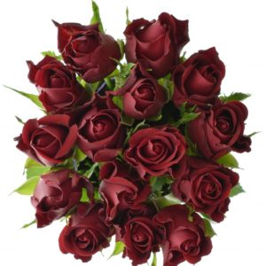 Kytice - Kytice 15 červených růží FURIOSA 50cm