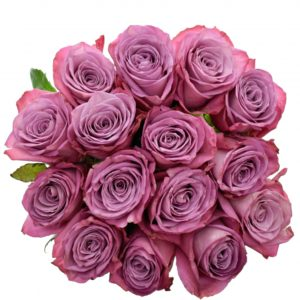 Kytice - Kytice 15 fialových růží MOODY BLUES 60cm