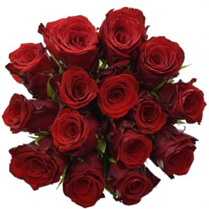 Kytice - Kytice 15 rudých růží INCREDIBLE 50cm