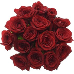 Kytice - Kytice 15 rudých růží RED NAOMI! 50cm