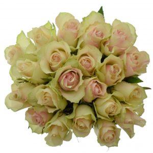 Kytice - Kytice 21 krémovozelených růží LA BELLE 50cm