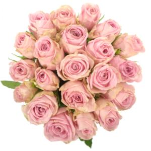 Kytice - Kytice 21 růžových růží HEIDI 60cm
