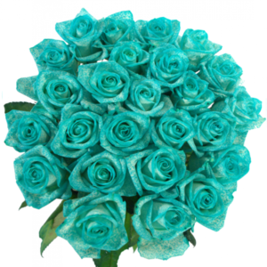 Kytice - Kytice 25 ledově modrých růží ICE BLUE VENDELA 60cm