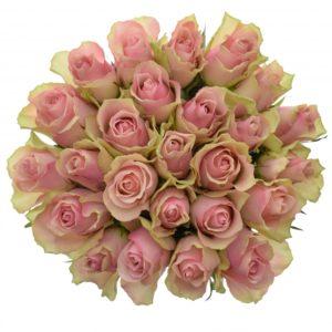 Kytice - Kytice 25 růžových růží BELLE ROSE 50cm