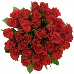 Kytice - Kytice 35 červených růží RED CORVETTE 50cm