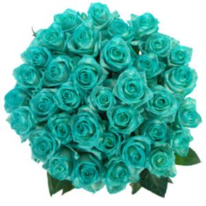 Kytice - Kytice 35 ledově modrých růží ICE BLUE VENDELA 60cm