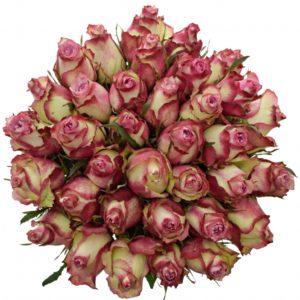 Kytice - Kytice 35 luxusních růží MELINA 80cm