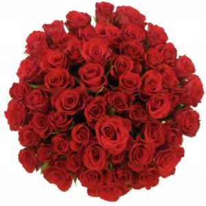 Kytice - Kytice 55 červených růží RED CORVETTE 50cm