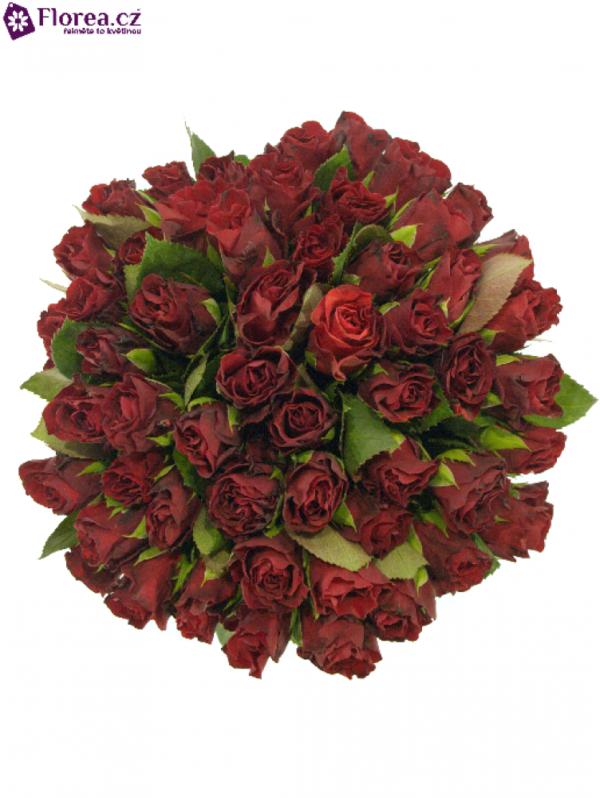 Kytice - Kytice 55 červených růží TORERO 40cm