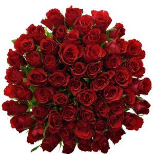 Kytice - Kytice 55 červených růží RED CALYPSO 50cm