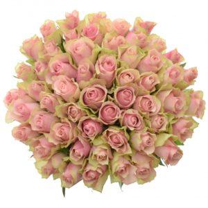 Kytice - Kytice 55 růžových růží BELLE ROSE 50cm