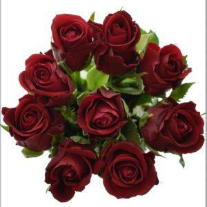 Kytice - Kytice 9 červených růží FURIOSA 50cm