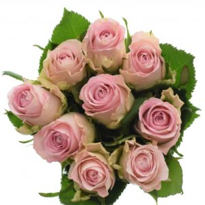 Kytice - Kytice 9 růžových růží BISOU 60cm